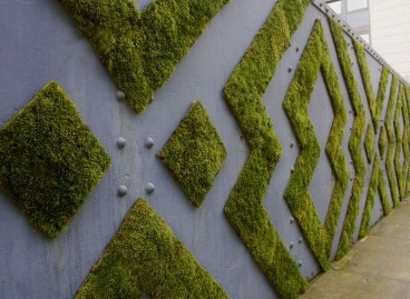 Moss Graffiti, Natures Street Art.